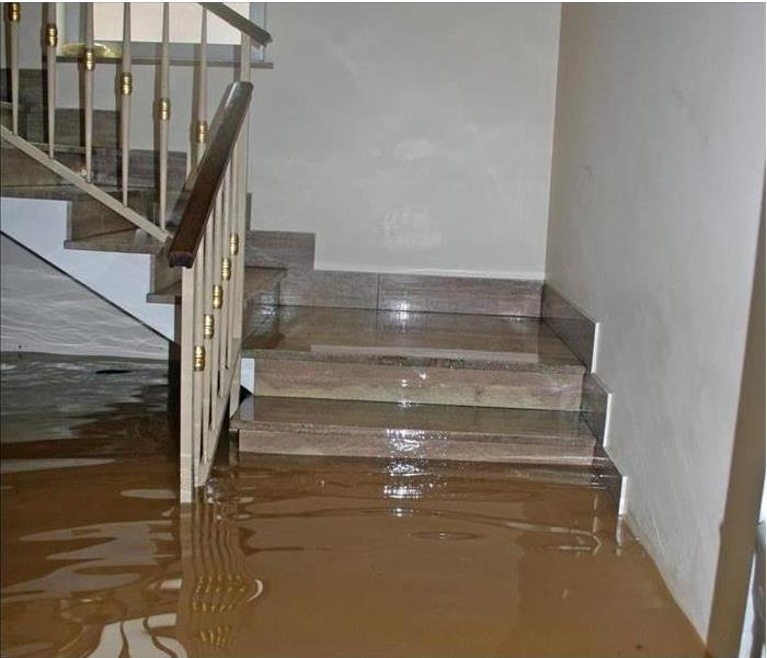 Storm Damage 3 Steps You Can Take To Mitigate a Sewage Flood in Your Home