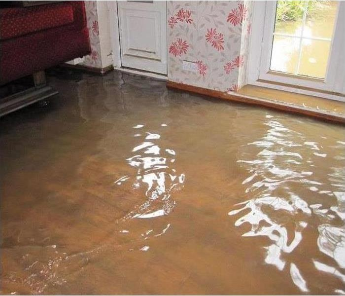 Water Damage Faster to your Lacey Water Damage Event